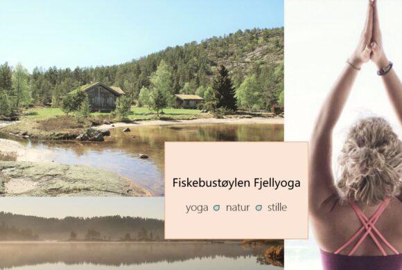 Fiskebustøylen Fjellyoga 2020